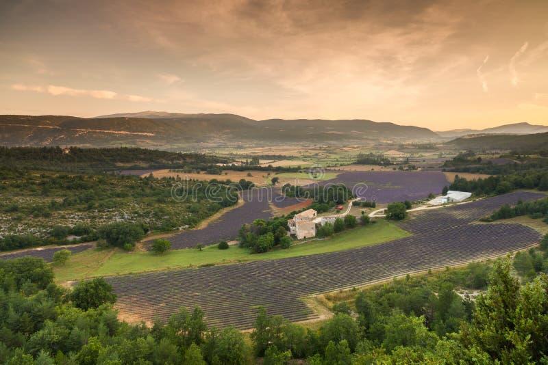 Ajardine cerca del pueblo Sault antes de la salida del sol, Provence, imagen de archivo libre de regalías