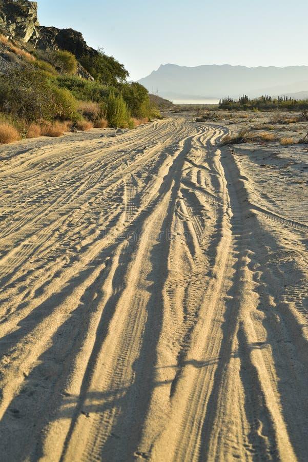Ajardine com as trilhas do pneu na manhã tropical Baja da estrada da praia, México fotografia de stock royalty free