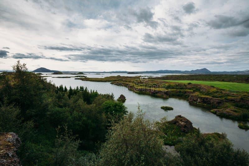 Ajardine com floresta e mar e céu nebuloso fotos de stock