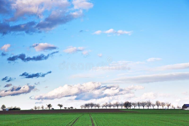 Ajardine con acres, árboles y nubes oscuras imagen de archivo