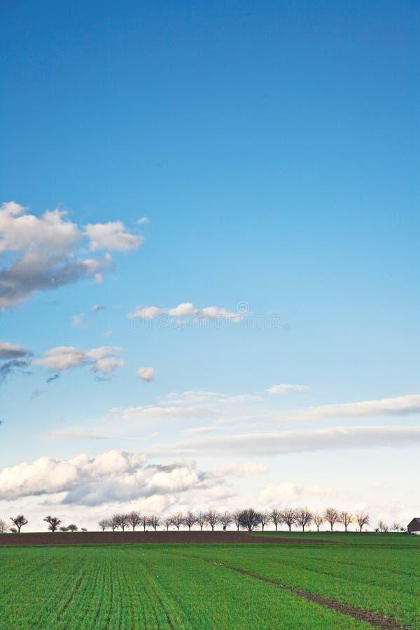 Ajardine con acres, árboles y nubes oscuras foto de archivo libre de regalías