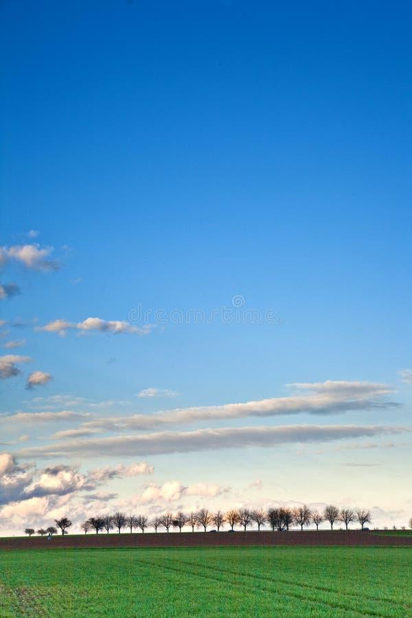Ajardine con acres, árboles y nubes oscuras imagenes de archivo