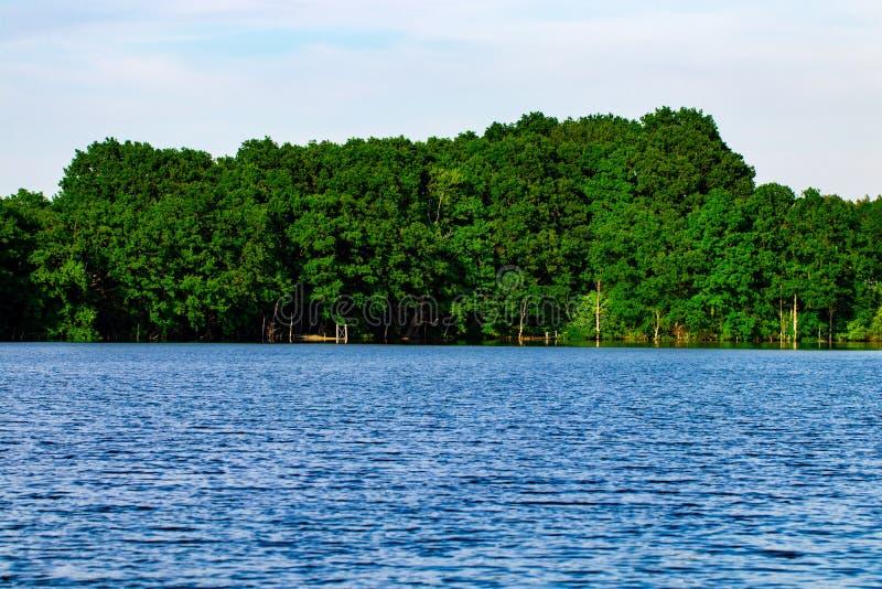 ajardine con, bosque y un río en frente Paisaje hermoso foto de archivo