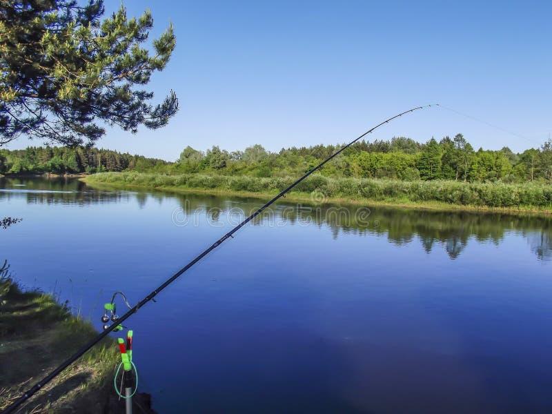 Ajardine con el bosque y un río en frente Paisaje hermoso fotos de archivo