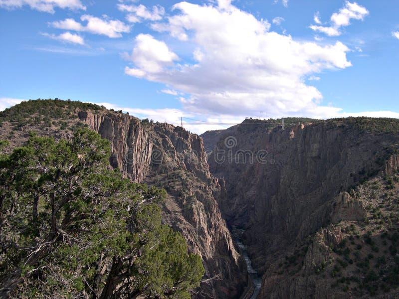 Ajardine con el cielo azul y los árboles en Colorado fotos de archivo libres de regalías