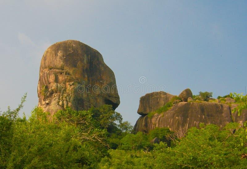 Ajardine con la colina del Scull del ount de Horst aka en el parque nacional de Yala, Sri Lanka fotos de archivo libres de regalías