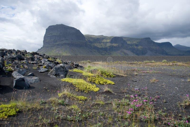 Ajardine con las dunas y la montaña coloreadas de Lomagnupur, Islandia fotos de archivo libres de regalías