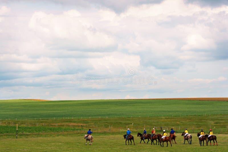 Ajardine con los jugadores del polo en Alberta, Canadá imágenes de archivo libres de regalías