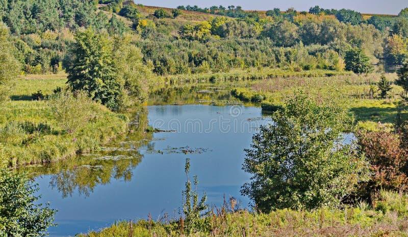 Ajardine con un pequeños río y verdor azules a ambos lados de la costa fotos de archivo