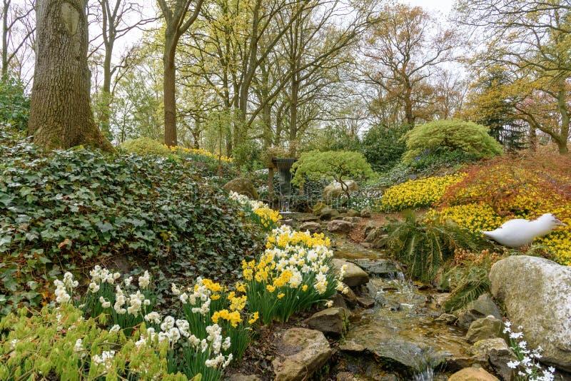 Ajardine con una cala del agua en los jardines holandeses de Keukenhof de la primavera en los Países Bajos Foto del viaje vertica fotos de archivo libres de regalías