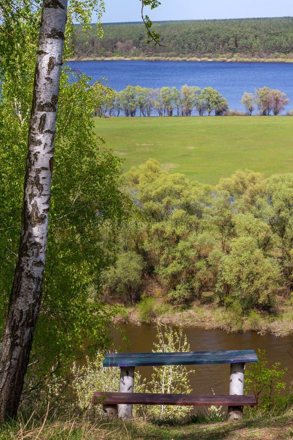 Ajardine da altura com bancos sob um vidoeiro em um fundo do rio de Desna com prados e florestas foto de stock