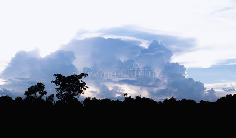 Ajardine el bosque de la silueta con backgrou determinado oscuro de la nube y del sol imagen de archivo