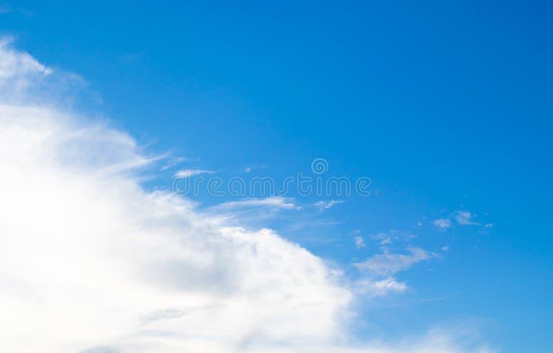 Ajardine el bosque de la silueta con backgrou determinado oscuro de la nube y del sol foto de archivo