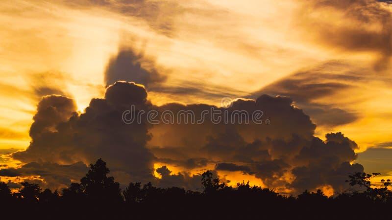 Ajardine el bosque de la silueta con backgrou determinado oscuro de la nube y del sol imagenes de archivo