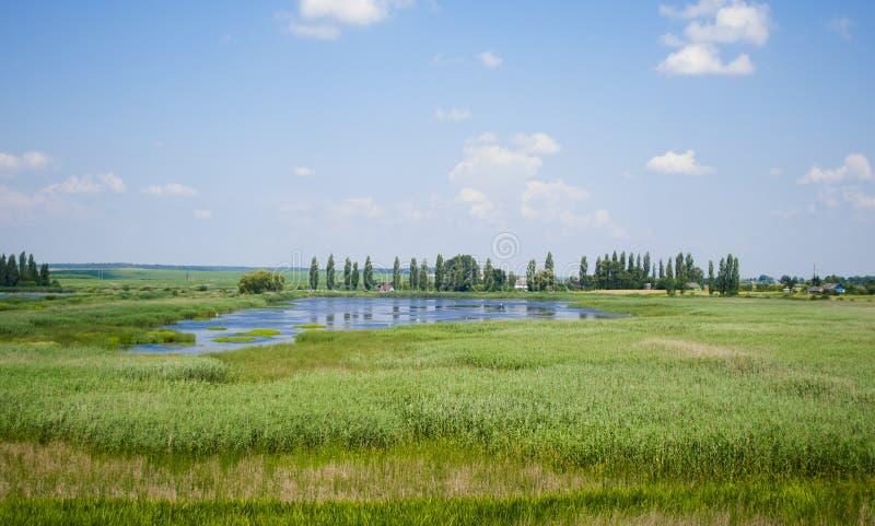 Ajardine el cielo con las nubes y el lago demasiado grande para su edad verano de las cañas foto de archivo