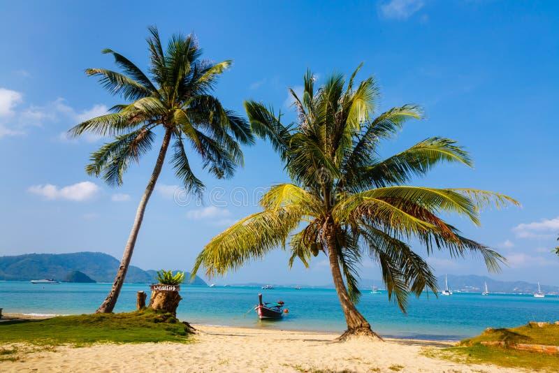 Ajardine el mar, el barco, una palmera en Phuket imagenes de archivo