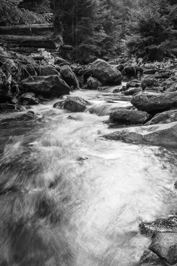 Ajardine el río de la montaña en la opinión del bosque del otoño de los rápidos pedregosos Foto blanco y negro de Pekín, China imagenes de archivo