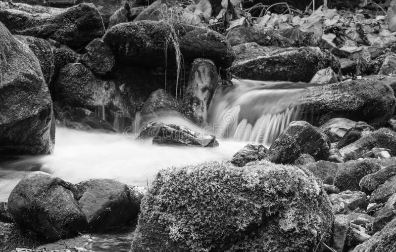 Ajardine el río de la montaña en la opinión del bosque del otoño de los rápidos pedregosos Foto blanco y negro de Pekín, China fotos de archivo