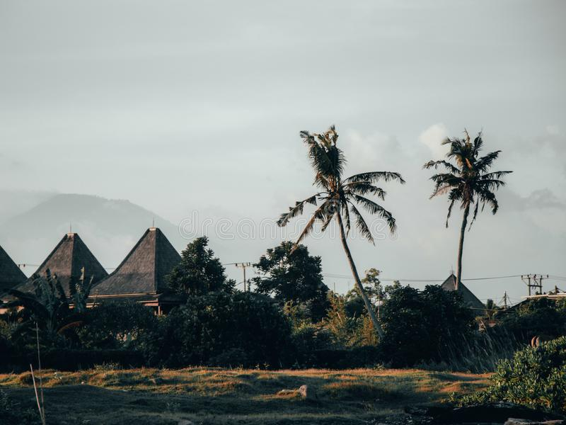 Ajardine en Bali con los chalets y los palmtrees y vulcano fotografía de archivo libre de regalías