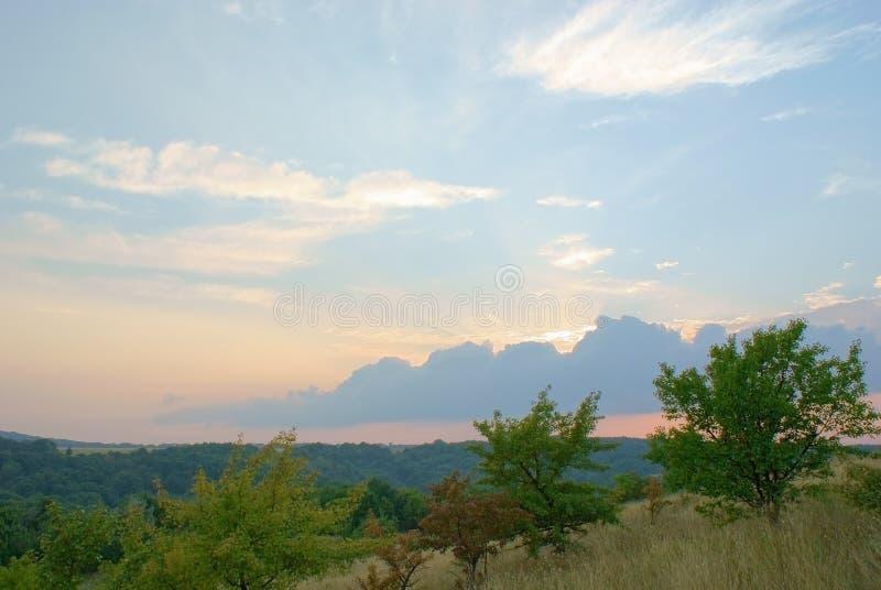 Ajardine en la puesta del sol con el cielo pintoresco en bosque-estepa imagen de archivo libre de regalías