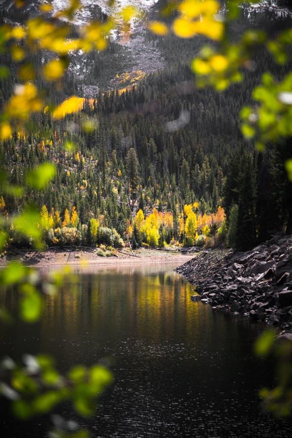 Ajardine la vista de un lago, de montañas y de un follaje de otoño capsulados nieve cerca de Aspen, Colorado foto de archivo