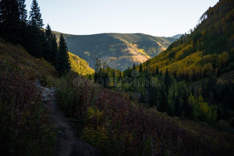 Ajardine la vista del follaje de otoño en las montañas cerca de Vail, Colorado foto de archivo