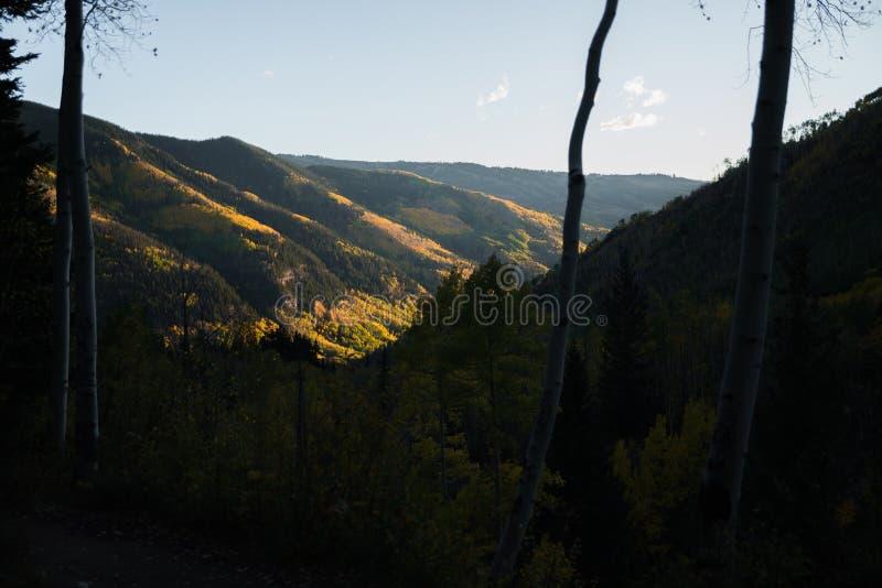 Ajardine la vista del follaje de otoño en las montañas cerca de Vail, Colorado fotos de archivo libres de regalías