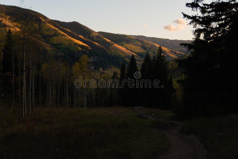Ajardine la vista del follaje de otoño en las montañas cerca de Vail, Colorado foto de archivo libre de regalías