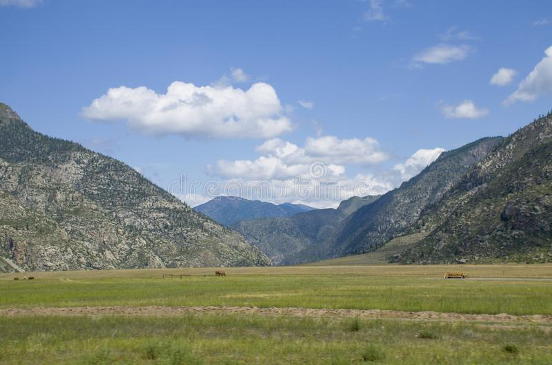 Ajardine a montanha na montanha Altai bonito fotos de stock royalty free