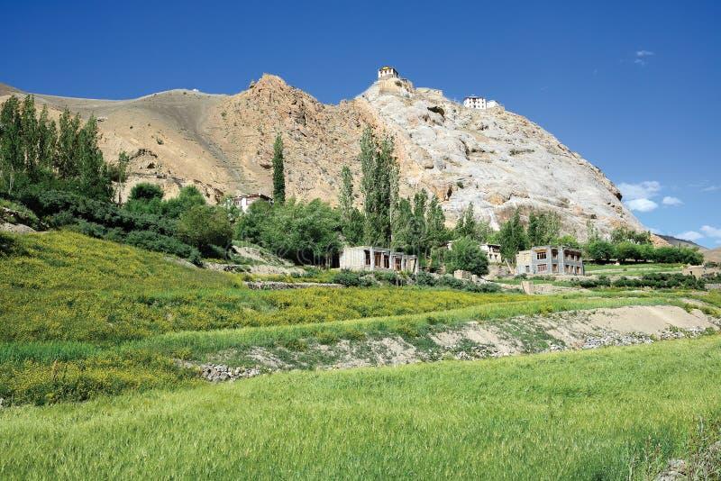 Ajardine perto de Mulbek, monastério de Mulbek igualmente pode ser visto na parte superior, Kargil, Ladakh-Índia fotografia de stock