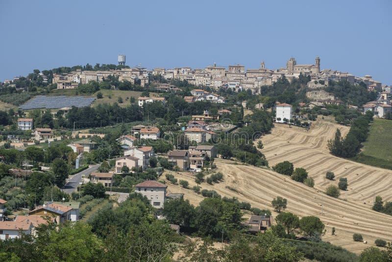 Ajardine perto do ` Elpidio de Sant Mare Marches, Italia imagem de stock royalty free