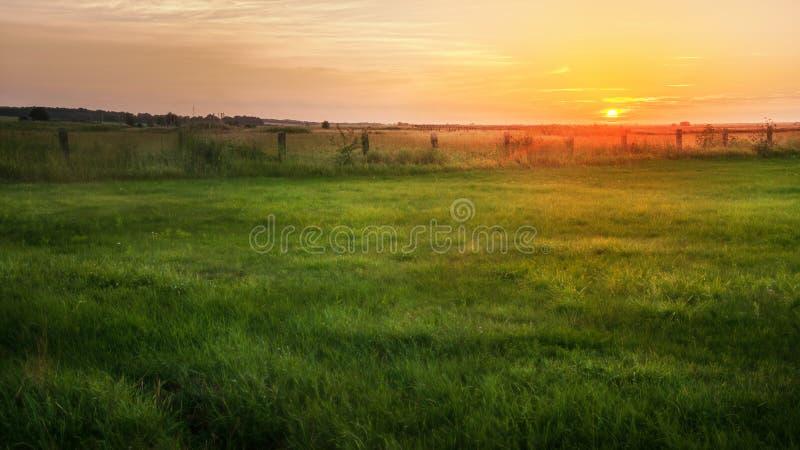 Ajardine, puesta del sol soleada hermosa en un campo fotografía de archivo libre de regalías
