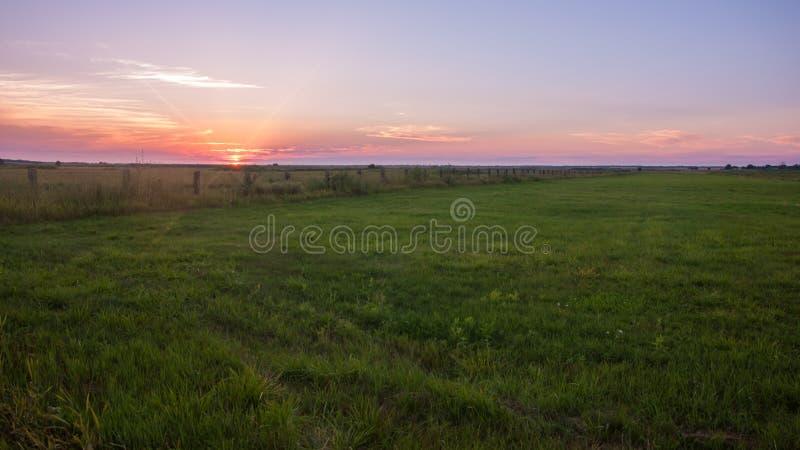 Ajardine, puesta del sol soleada hermosa en un campo foto de archivo