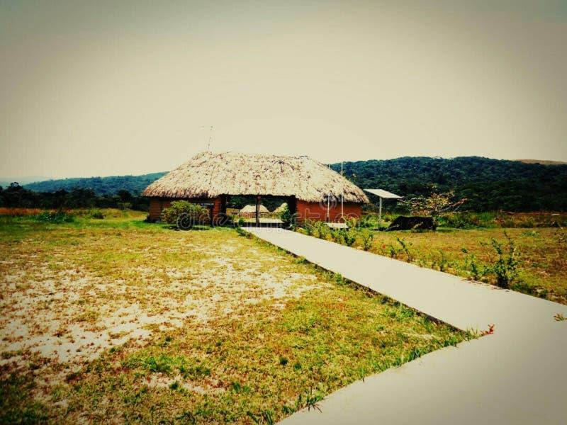 ajardine verde da Venezuela de amazon do savana do parque das cabanas o grande fotos de stock