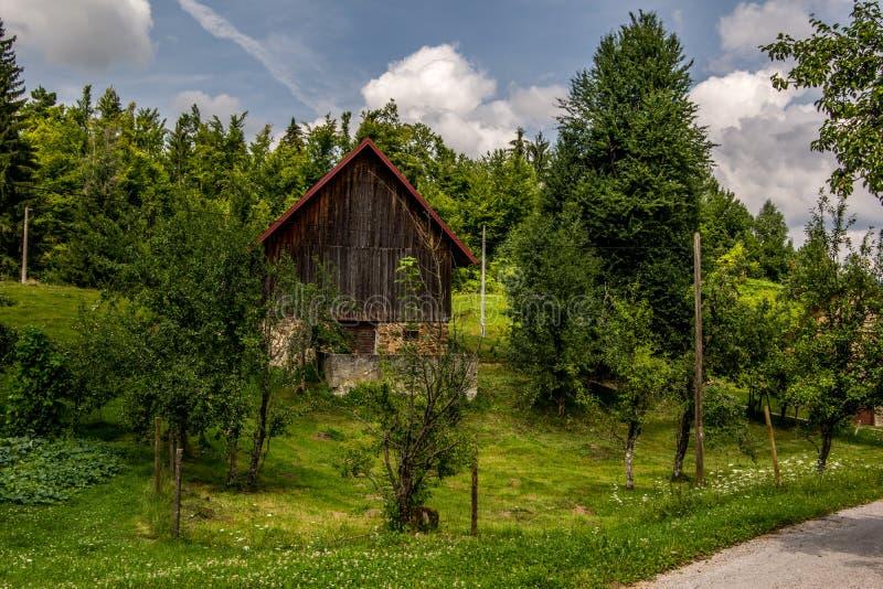 Ajardine a vista da cabana de madeira souranded com prado e gre verdes fotos de stock royalty free