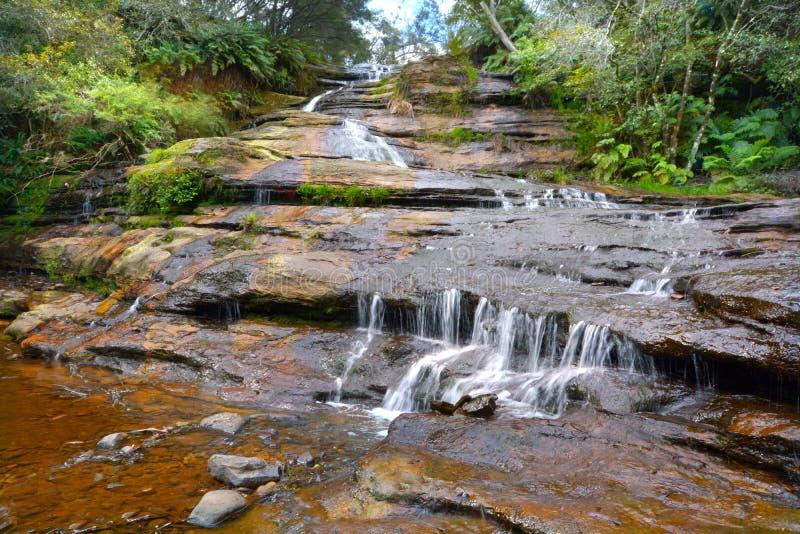 Ajardine a vista de montanhas azuis Wa sul novo das cascatas de Katoomba fotografia de stock royalty free
