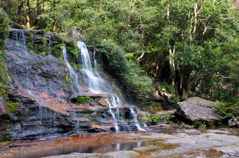 Ajardine a vista de montanhas azuis Wa sul novo das cascatas de Katoomba imagem de stock