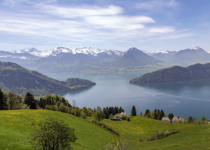 Ajardine a vista do lago Lucern, montanha de Apls com flor da grama imagens de stock royalty free