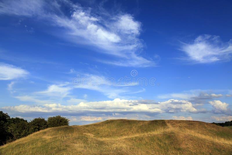 Ajardine a vista do prado e do céu azul com nuvens fotografia de stock