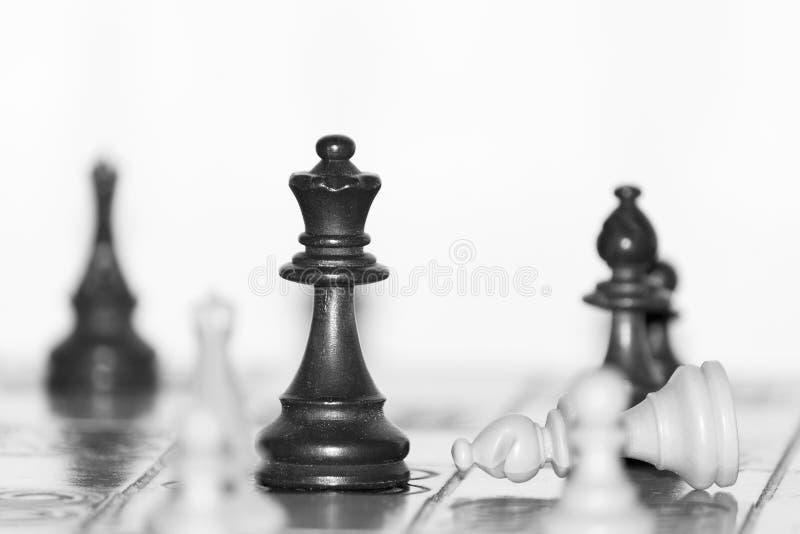 Ajedrez fotografiado en un tablero de ajedrez fotografía de archivo libre de regalías