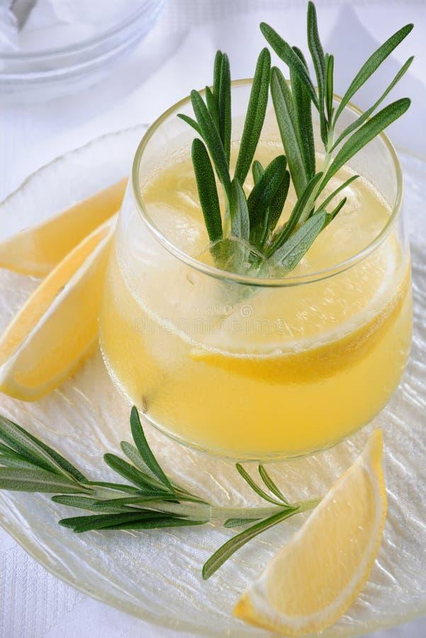 Ajer?wka z toniki i cytryny sokiem zdjęcie royalty free