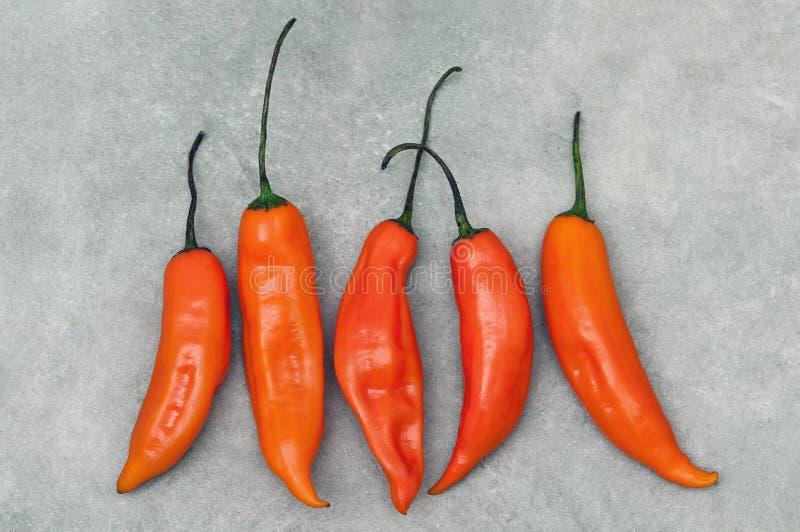 Aji amarillo hot chili peppers on stone background. Group of Peruvian aji amarillo hot chili peppers on stone background from above stock photo