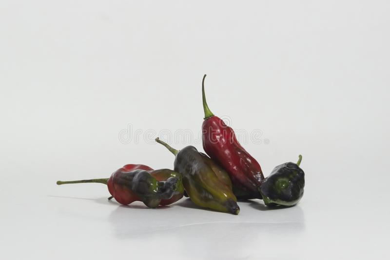 Limo chili still life - Set of different colors at the same plant. The Aji Limo is a strong chili that is used in Peruvian cuisine. As a seasoning for spicy stock photo