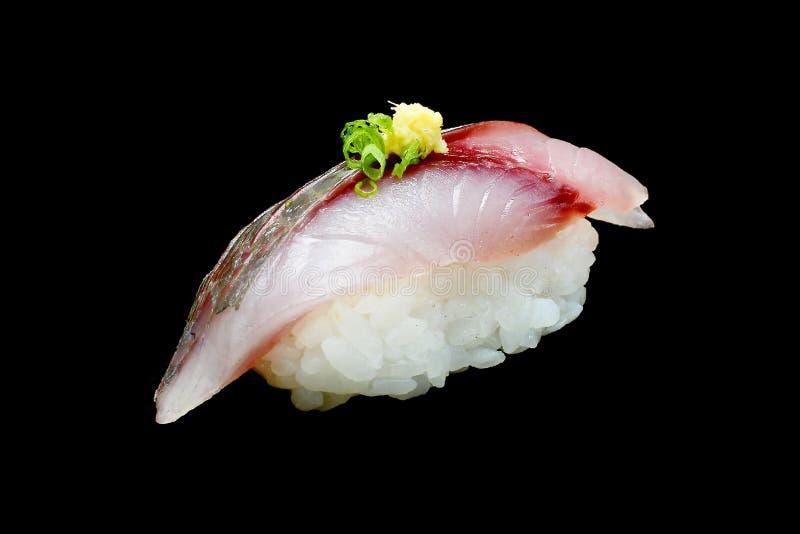 Aji sushi eller rå häst - makrillfisk på japanska ris Japansk traditionsmat royaltyfria foton