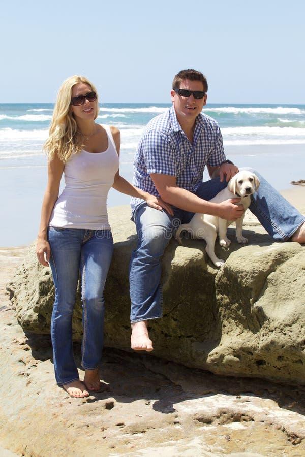 Ajouter attrayants à leur chiot de labrador retriever à la plage photo libre de droits