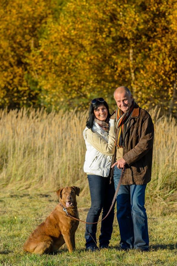 Ajouter au chien dans le coucher du soleil d'automne de parc image stock
