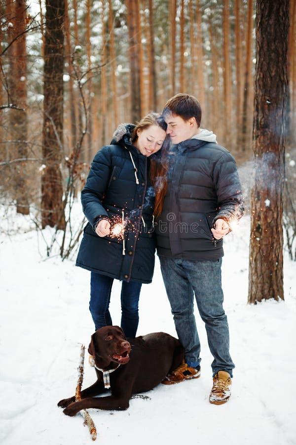 Ajouter heureux au chien appréciant la soirée d'hiver images libres de droits