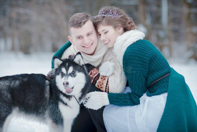 Ajouter romantiques au chien de traîneau sibérien dans la forêt neigeuse d'hiver photos stock