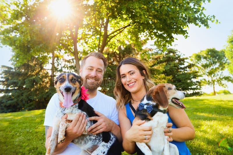 Ajouter romantiques heureux aux chiens masculins et femelles photographie stock
