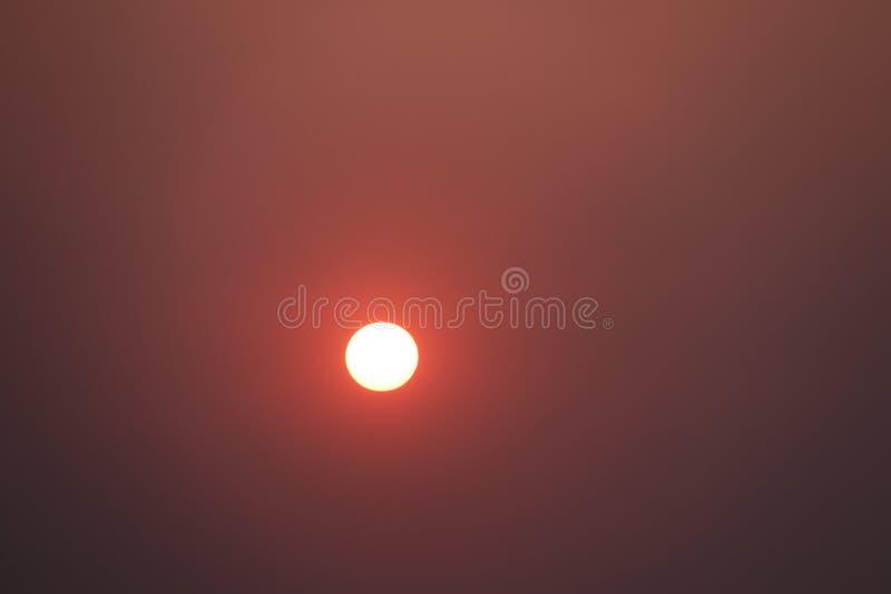 Ajustando a soma após voltas douradas ao sol vermelho e cor-de-rosa fotografia de stock